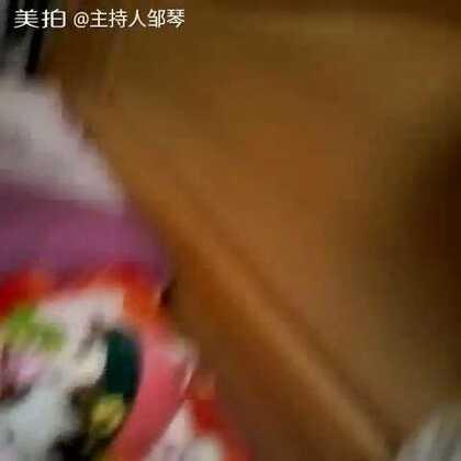 【主持人邹琴美拍】03-29 21:42