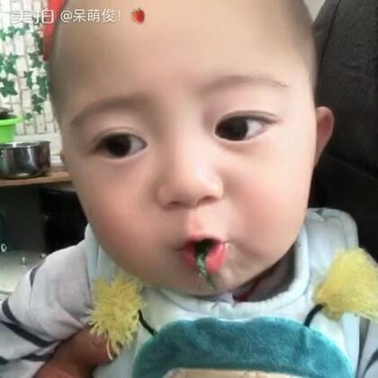 俊俊是浙江 #宝宝#山西 混合养 🤣🤣🤣