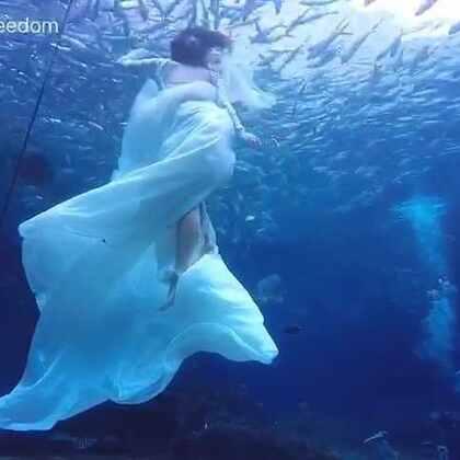 水下婚纱拍摄花絮,#自由潜水##原创水下短片#