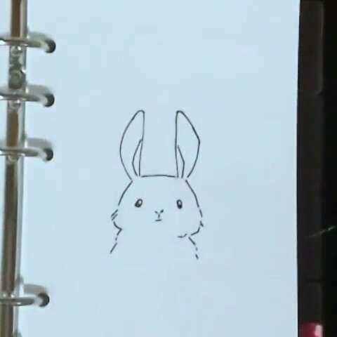 兔几兔几 简笔画 小灯灯找不到了,光线好暗啊 ω 胡杨唐的美拍
