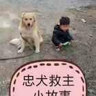 #宠物#您的支持就是我们的动力,让我们一起来保护我们身边的它♥,同时也要看好自己的孩子,切勿大意……