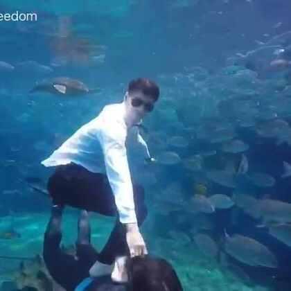 骑着黄双鱼去泡妞#自由潜水##搞笑##水下写真#