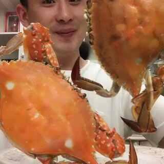 #吃秀##热门##美拍小助手#太给力了这个梭子蟹,就是有点贵😂我先尝尝,性价比高的时候通知宝宝们😂😂😂