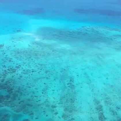 #澳洲大堡礁#