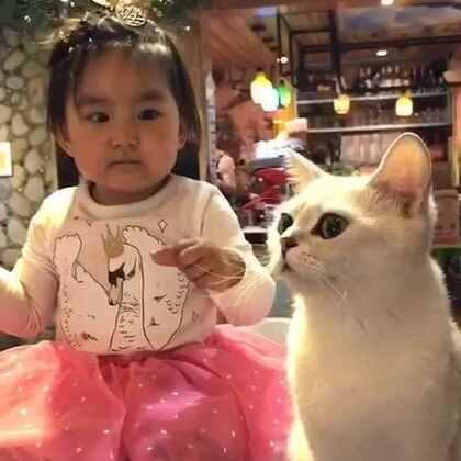 后海·猫小院,果果又来了。亮眼睛👀#宝宝#