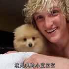 我买了一只小狗!以后你们可以在我的视频里一直看到我的小狗啦🐶#热门##宠物##搞笑#