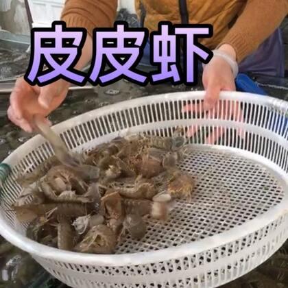 这是五一去秦皇岛我姐家时候的#美食##皮皮虾##和家人一起的时光#