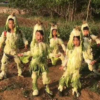 #搞笑##宝宝##我要上热门#农村地里这样的白菜卖不出去,喂鸡……喂猪有的是……请大家不要纠结浪费这个问题