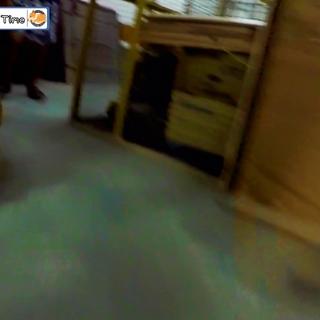 """【狗仔新聞報導】台南市某女子在地下停車場被變態襲擊,美女驚慌失措快跑不及慘遭""""基""""吻 #柯基犬嘎逼##萌宠##寵物#"""