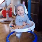 最近開始用學步車玩一下,寶寶挺喜歡的☺️ 說明書上面寫一天加起來可玩4小時,每次玩不要超過半小時,但通常我家寶寶5分鐘就膩了😂 所以沒有什麼好擔心的。適當的玩耍是可以的但還是要依寶寶情況使用哦! #男寶寶9個月又3天#