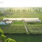 一个19岁女孩,和爸妈搬离了市中心100平米的小家,在乡下租下10亩地,把农村平房改成了乡村小院。200㎡的大房子、300㎡的大草坪,还有将近5000㎡的果园,种了200多种花、300多种多肉、9种水果!!!via 一条#创意家居馆#