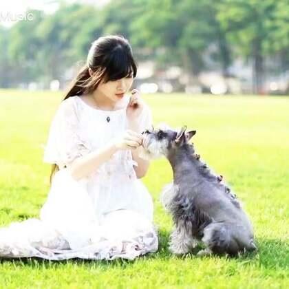 """它叫""""coco"""",感谢有它的陪伴,如果你也养了#宠物#宠物请一定善待它🙆,你也许有很多朋友,但它只有你!喜欢这首歌双击➕转发,这期取两位送惊喜小礼物😘#宠物##00后#"""
