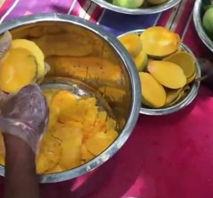 印度大叔摘新鲜芒果来烹饪,最后成品不忍直视,太辣眼睛.😃😃😃