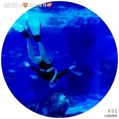 #自由潜水# 我是一只游上游下的🐠鱼。#天津极地海洋馆##我爱自由潜##美人鱼##美拍小助手#