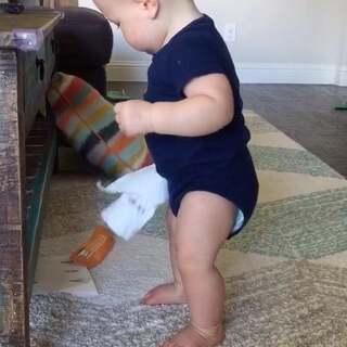 TJ宝宝的桩子越来越稳了!现在不用扶东西就可以自己站起来了。#小猴子TJ八个月+21天#
