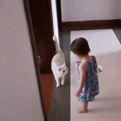 #宝宝##女孩与猫##萌宝宝#那女孩与猫🐱,喵~