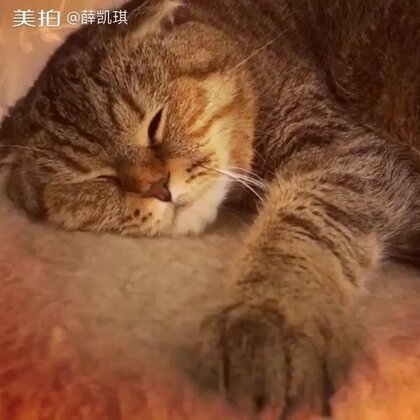 Is #ponyoju#sleeping with one eye opened ?!?!
