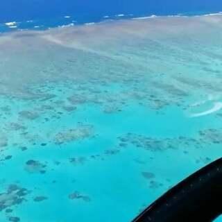 #澳大利亚大堡礁#太美了。真的,看完心情都会好,☺心情变好的请给我一个赞~