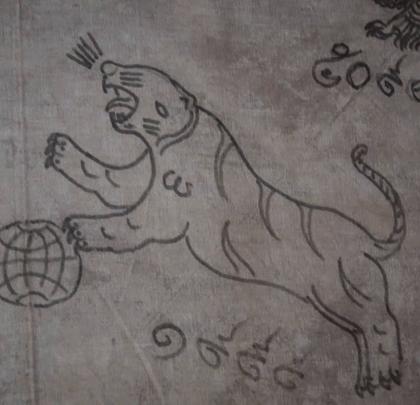 """无头虎,是泰国法门中最厉害的一只老虎。据阿赞法师说,这种符只能在佛节或者特殊节日才能刺,它的寓意不仅是招人缘,更有像""""神猴""""哈奴曼战无不胜的样子!#我要上热门##探险##旅行#"""