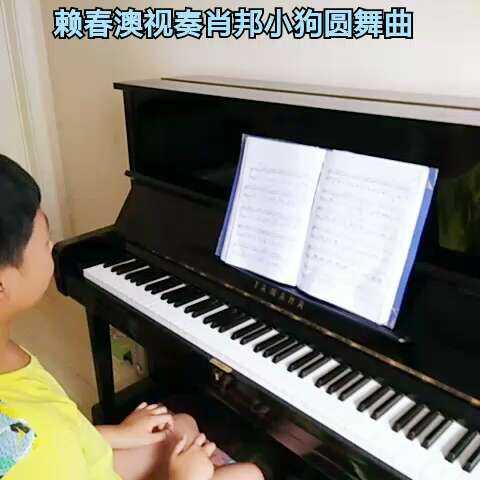 小狗圆舞曲 肖邦圆舞 赖春澳钢琴笔记的美拍