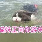 😱😱今天全家海边游泳,妹子惊现游泳天赋🙈放下水,直接就狗刨了😂不愧是汪哥带大的孩子,鉴定完毕👻第18秒,妹子鸭叫回应我😘#宠物##宠物游泳##美拍运动季#