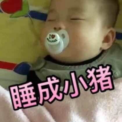 看到留言问奶嘴到底好不好的,分享一个柚子小时候的视频,我真的是觉得奶嘴是最佳哄娃神器啊,每次一塞嘴里就呼呼大睡了(视频里真的有打呼声。。。😜)#宝宝##多喵和小柚子的日常生活#