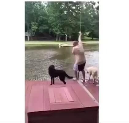 身边能有这样的狗狗也是人生中一大幸运!