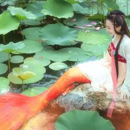 又忙到好晚才想起来更新,这是正片,之前发的是拍摄花絮哈,8月北京写真名额已满,8月19和26南京还有两个写真名额可以预约哦#锦鲤抄##人鱼写真#