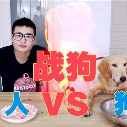 《战狗》@super动次 #热门##宠物##搞笑#