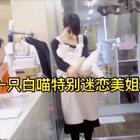 有一只白喵特别迷恋猫咖啡厅里的店员小姐姐👍老是就各种撒 ❤️#精美电影##宠物##正能量#