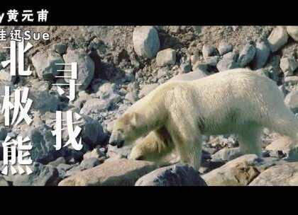 本来以为北极是无聊的白色荒漠,到了才发现,一头栽进了有花有草的动物世界??还碰见【两头北极熊吃鲸鱼】罕见画面!! 看完这支视频,你已经比95%的人更了解北极了!#运动##美拍运动季#