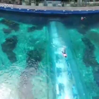第一次尝试用无人机拍摄,从此又多了一个角度看世界,小毅再次带你走进美美的自由潜世界^_^#航拍##美人鱼##自由潜水#