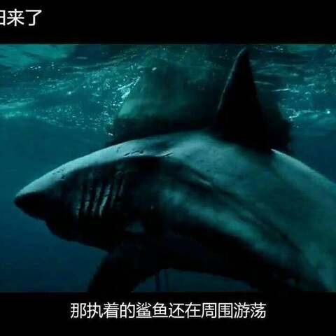 【下】一部让你全程肾上腺素飙升的鲨鱼片,全程无尿点紧张到窒息
