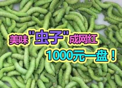 """131 1000元一份的美味""""虫子"""",看的头皮发麻,你敢吃吗?#麻辣段子狗##黑暗料理##我要上热门#"""