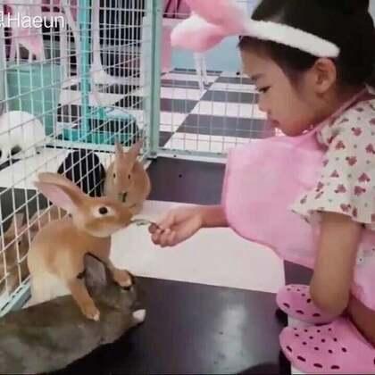 罗夏恩 (Na Haeun) - 兔子咖啡屋 #罗夏恩##宝宝#