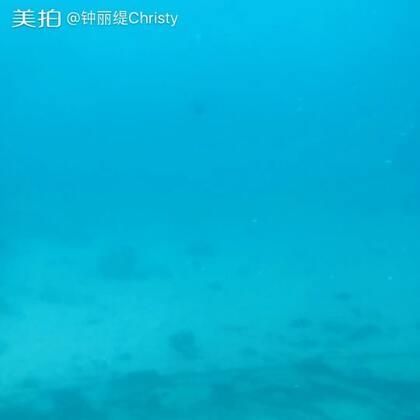 My yellow submarine 🚤我们今天去塞班岛黄色潜水艇😊@叶易德TRACY @张伦硕
