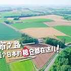 北海道最美村庄——美瑛,很多人都想在拼布之路上骑行,享受一段美好的时光!#hi走啦##宝宝##我要上热门#