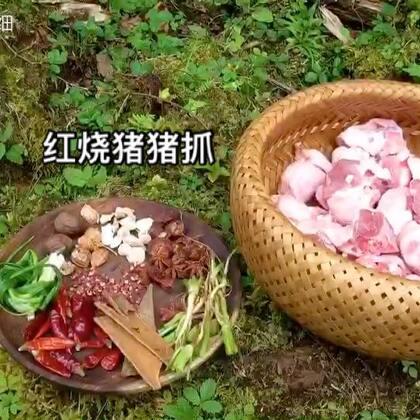 不用任何添加剂只用植物香料做出来的食物真的太棒啦。这猪抓没想到要炖好久好久才如此软糯。就喜欢红烧味的。这次在评论区抽3位最热评论各送5斤高山猕猴桃。猕猴桃出来的季节当然要分享一下呀。记得多多点赞哦。爱你们。#美食##热门##野外厨房#@我要嗨WoYaoHai