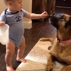 没想到我们家两个小吃货在食物这件事情上还可以如此的相亲相爱!😭😭😭😭#小猴子TJ11个月#