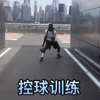 训练师Richard J. Starling的各种freestyle合集,看不厌的控球!#篮球##nba#