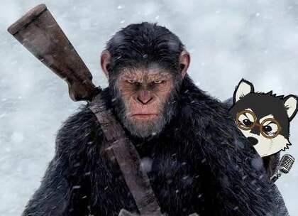 《猩球崛起》的真正结局!未来人类竟然沦为了猩猩的宠物!五分钟看完《人猿星球》。