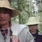 来自山林里的东方美味 #陈翔六点半#