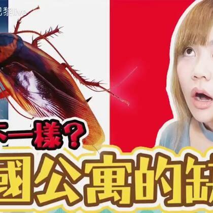 法国公寓让我吐血的问题!蟑螂跟国内的大不同!要看完整版本的要关注Uta的微博啦!@美拍小助手 #我要上热门##热门##法国#