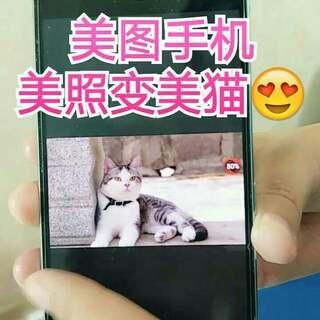 美照变美猫,只需一秒😜😂#美图手机也有戏##广告也有戏##巴蒂yes or no#