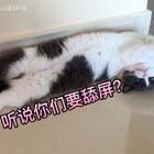 🌹来啦来啦🐱妹子睡相大合集😍开启舔屏模式😏😊😬#宠物##日志##宠物奇葩睡姿大比拼#