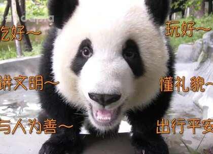 #萌团子陪你过周末# 国庆节到啦,祝大家节日快乐!