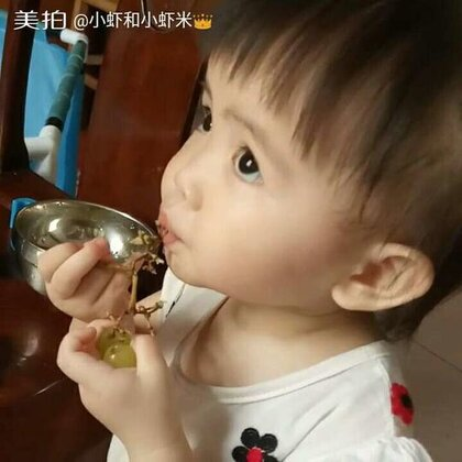 #宝宝##萌宝宝##小虾米吃葡萄#吃得好认真~