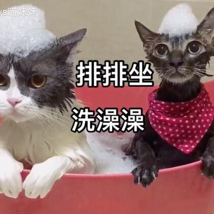 姐弟俩的泡泡浴🛁你喵一下我喵一下 姐弟俩聊得啥 大家来说说😂#宠物##俩喵欢乐多##喵汪洗澡记#