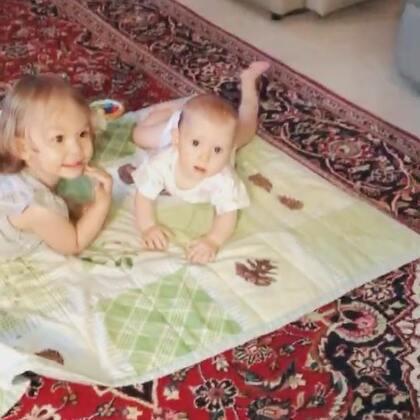 随手拍一下两只小妞😁#伊诺和小表妹#