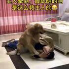 #宠物##搞笑#😂😂😂